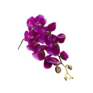 Купить Орхидея фиолетовая 105 см (8), У