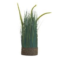 Сухоцвет вейник зеленый  на плетеной основе