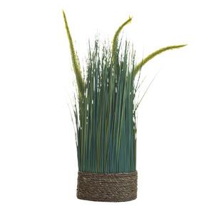 Купить Сухоцвет вейник зеленый  на плетеной основе