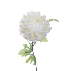 Купить Хризантема белая 63 см (24)