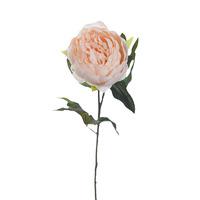 Пион нежно-розовый 65 см
