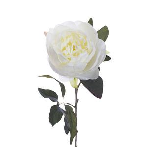 Купить Пион белый 65 см (24)