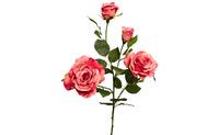Роза нежно-розовая,80см