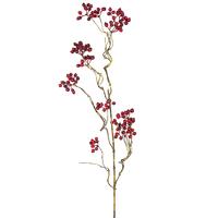 Ветка с ягодами, красная