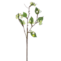 Ветка с ягодами и листьями, зеленая.