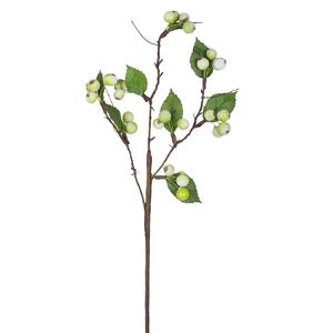 Купить Ветка с ягодами и листьями, зеленая.