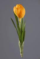 Крокус желтый 20 см 12/144