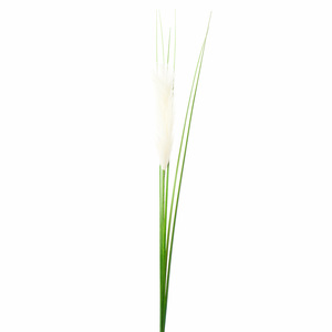 Купить Пампасная трава, 97см