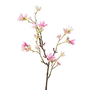 Купить Ветка цветущая