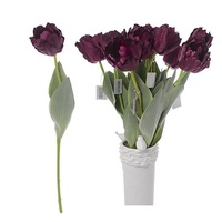 Тюльпан бордовый