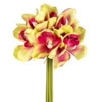 Букет из орхидей, асс. из 5-ти шт., У